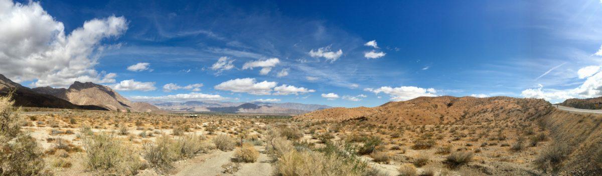 In dieser Wüste…